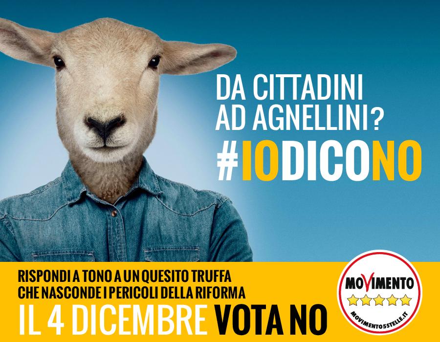 iodicono_agnello