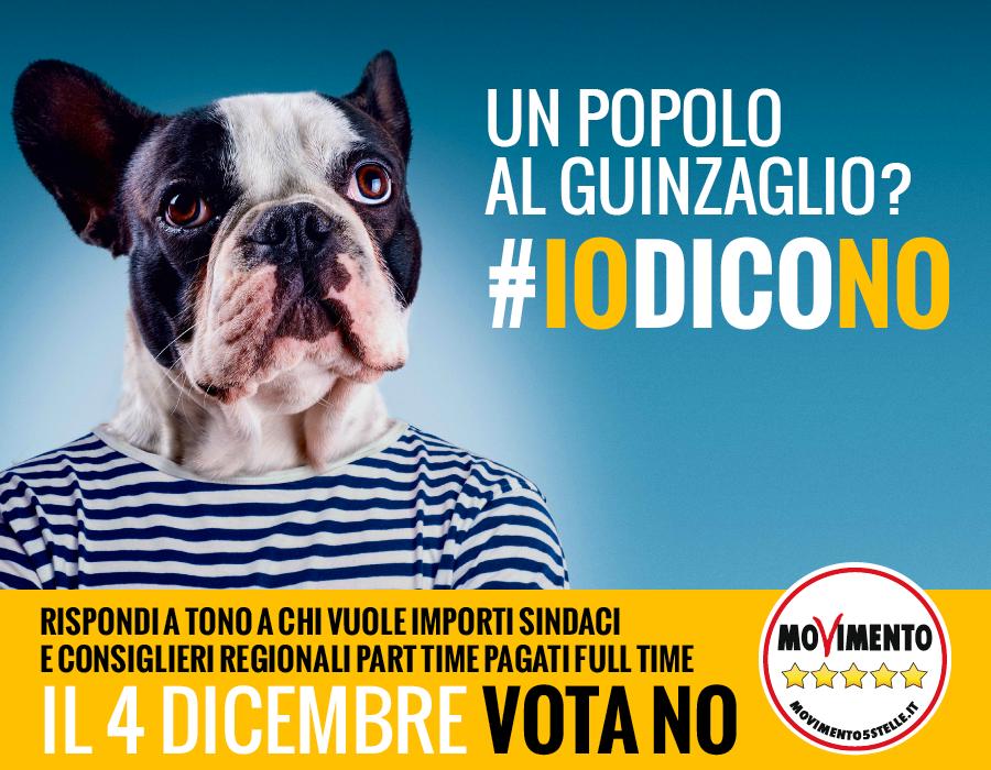 iodicono_cane