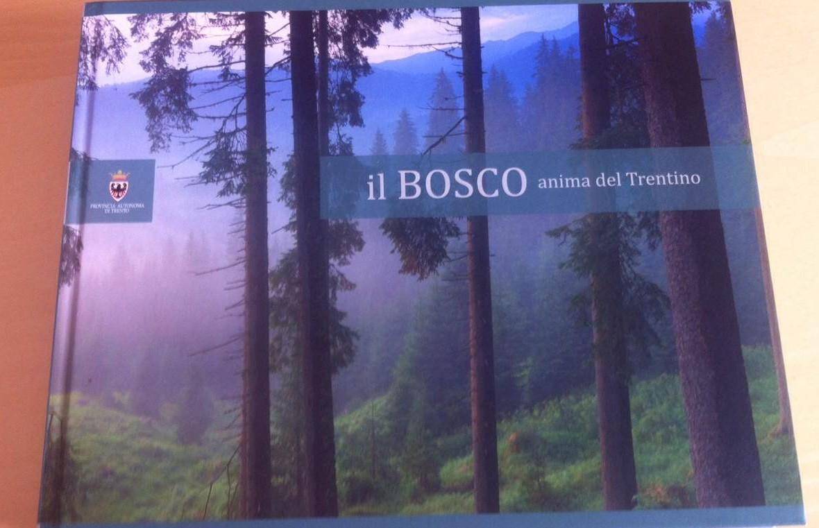 You are currently viewing «Il bosco anima del Trentino», o come spendere male 50 mila euro